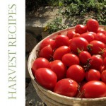 Harvest recipes 1