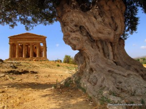 Agrigento's Valley of the Temples (2)