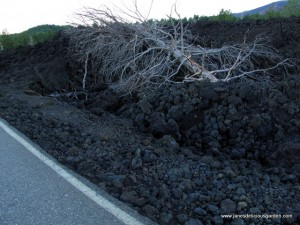 Lava fields on Mt Etna, result of eruption 2002 accessed by rebuilt road (2)