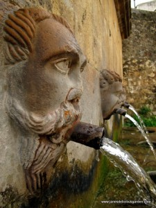 Natural spring water (1)