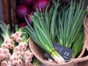 Spring and green onions (1)