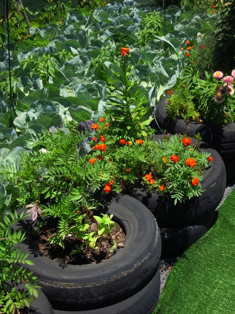 Rooftops Tend To Dry Out More Quickly Than A Normal Garden And A Reliable  Water Supply Is Important. Water Wise Methods Such As Mulching, Intensive  Planting ...